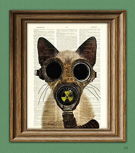 Art Steampunk Print Fallout Kitten Post Apocalyptic Gas Mask Cat Illustration Beautifully Upcycled Dictionary Page Book… 3