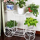 Dazone Rectangular Garden Cart Stand/Flower Pot Plant Holder Display Rack, 6 Tiers, Parisian Style – Great Decor for Home, Garden, Patio (White/Metal) For Sale