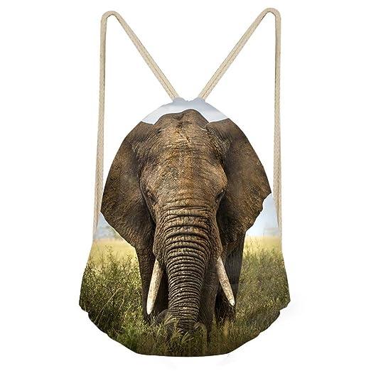 8b179ac6609f doginthehole Dinosaur Lightweight 3D Drawstring Bag Gym Travel Storage  Backpack