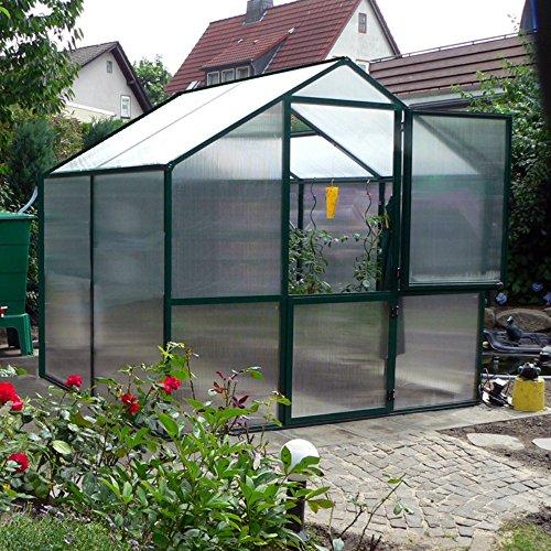 Exaco Trading Rose Greenhouse