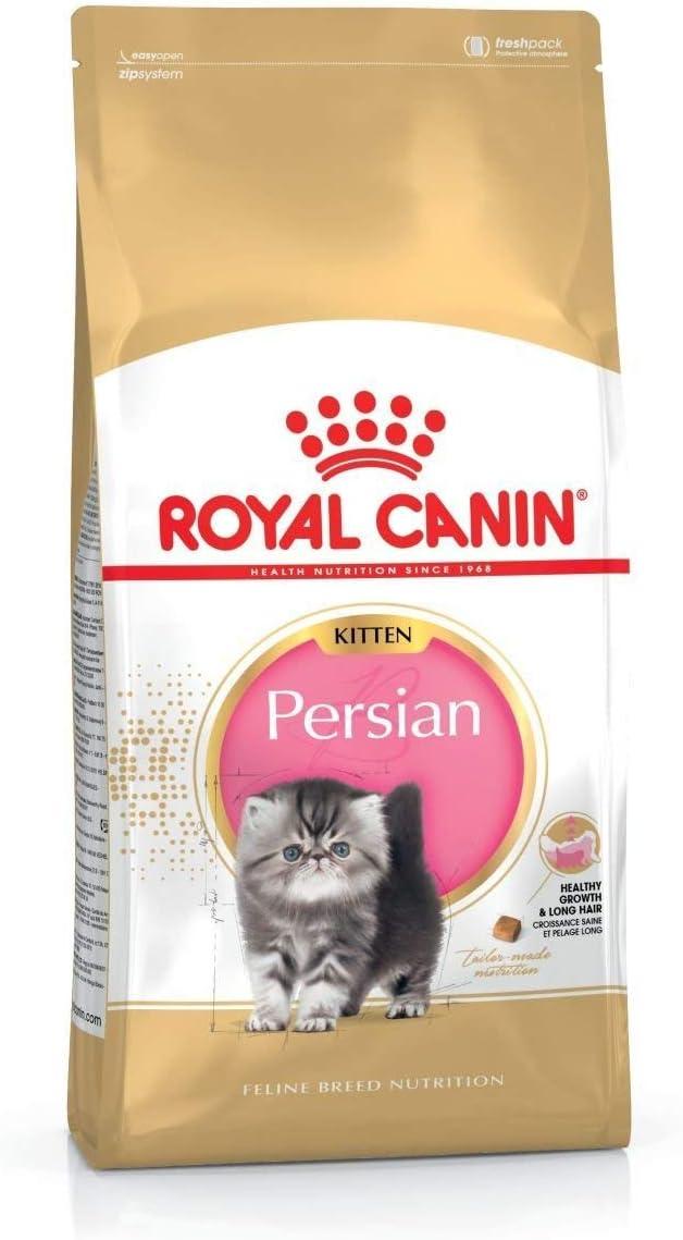 Royal canin - Persian pienso para Gatitos de Raza Persa