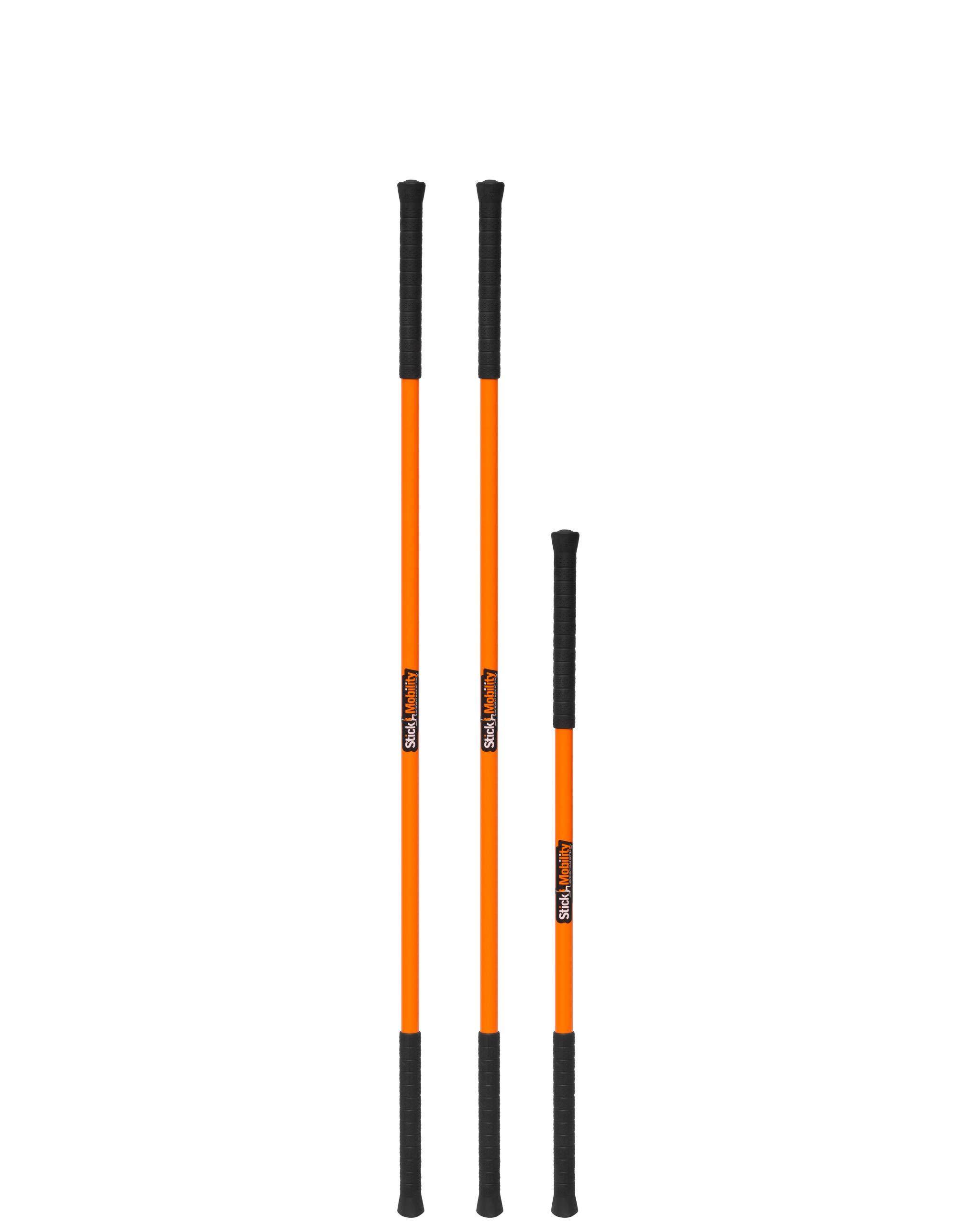 Stick Mobility Training Bundle (664, 225)
