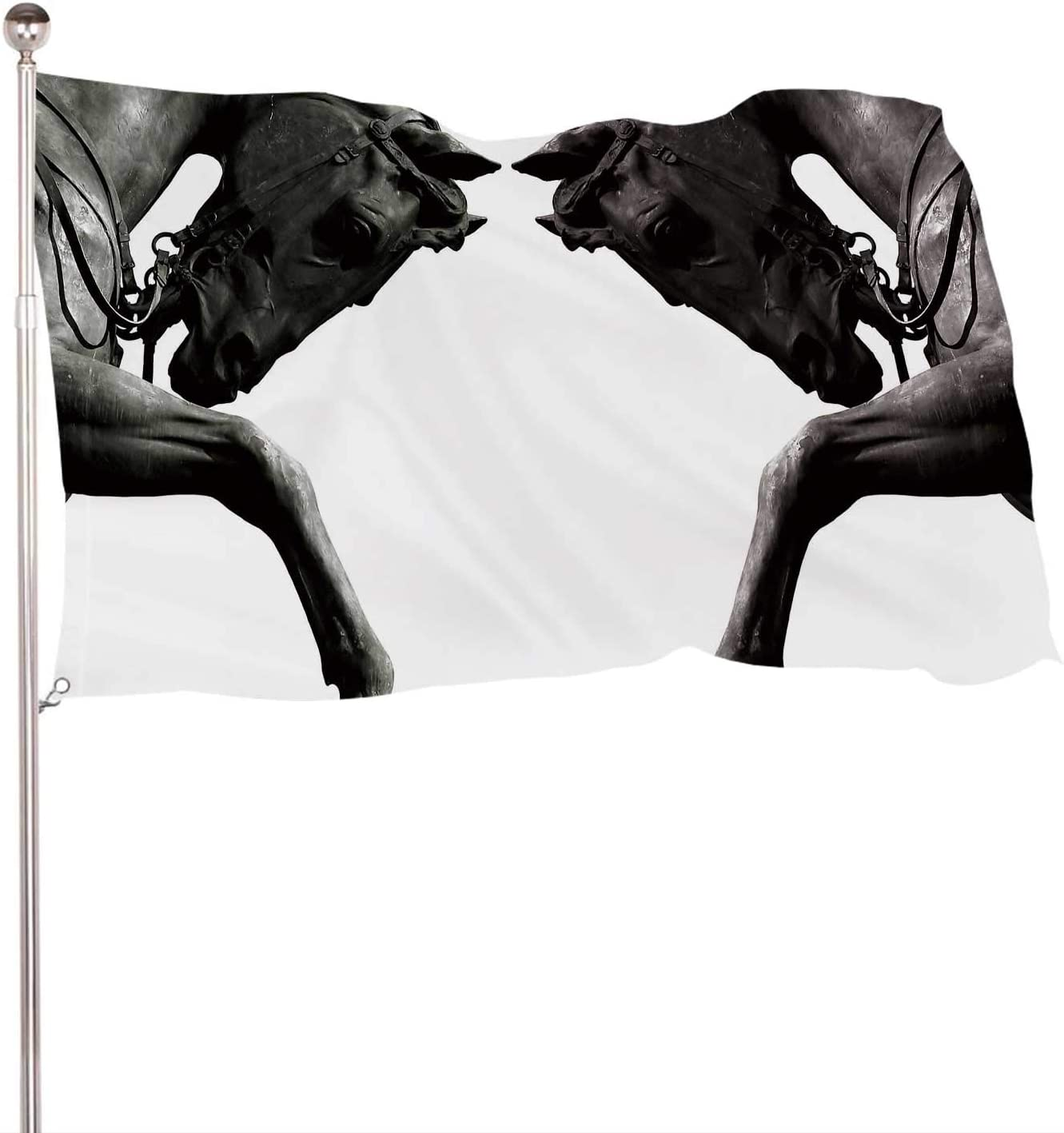 C COABALLA Twin Horses,Banner Flags with Grommets for Decor 3x5 Ft