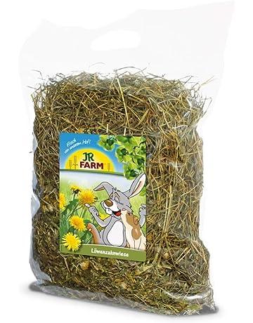 JR de Farm Diente de león Wiese heno con Diente de león