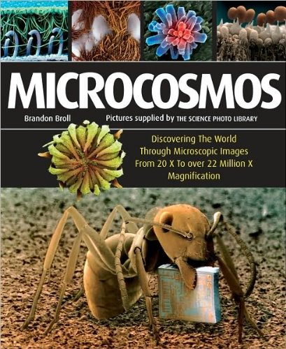 Download by Brandon Broll Microcosmos: Discovering The World Through Microscopic Images From 20 X to Over 22 Million X Magnification(text only)[Paperback]2010 pdf epub
