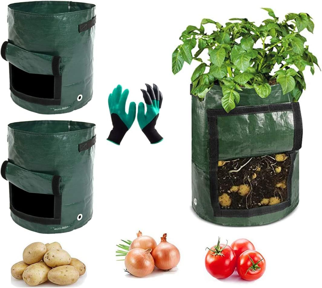 Plant Grow Bags 3 Pack 10 Gallon Flower&Vegetable&pots for Plants Container with Handle and Large Harvest Window,1 Gardening Gloves for Potato,Tomato,Carrot,Onion