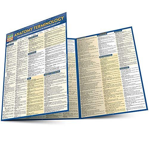 Anatomy Terminology (Quick Study Academic)