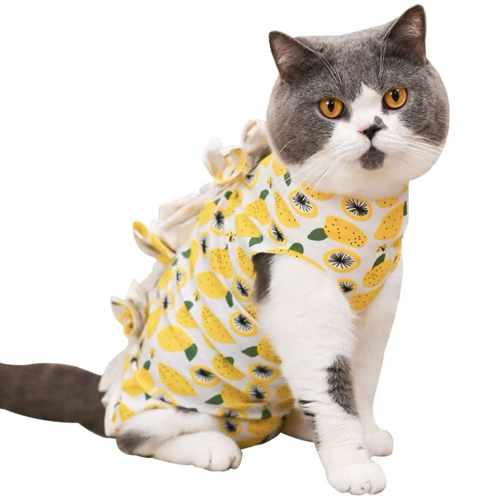 Stock Show Anxiety Suit for Cats