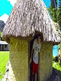 Peace Corps Cribs - Fiji