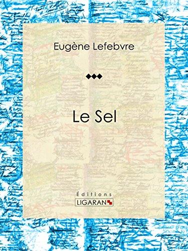 Le sel: Essai sur la chimie (French Edition)