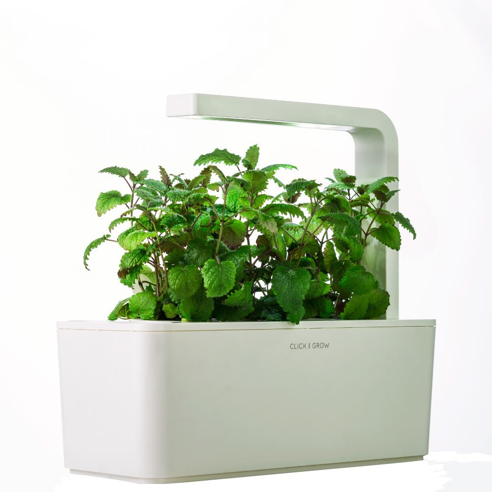 Indoor Kitchen Herb Garden Kit Amazoncom Click Grow Indoor Smart Fresh Herb Garden Kit With