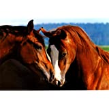Tenderness Poster 36 x 24in