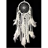 """Dremisland Dream catcher handmade traditional white feather dream catcher wall hanging car hanging decoration ornament gift (Dia 4.33"""")"""