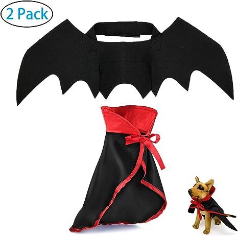 Amazon.com: Disfraz de perro y gato extraño para Halloween ...