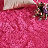 PAGISOFE Hot Pink Fluffy Shag Area Rugs for Bedroom