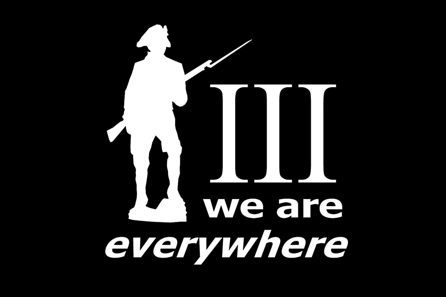 DecalDestination Patriot Three Percenter We Are Everywhere Decal White Choose Size