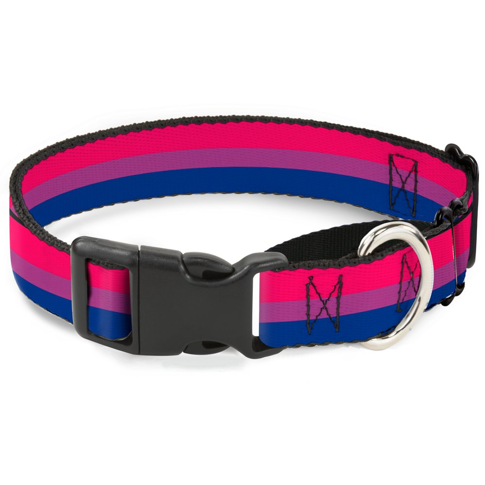 Buckle-Down Flag Bisexual Pink Purple bluee Martingale Dog Collar, 1  Wide-Fits 15-26  Neck-Large