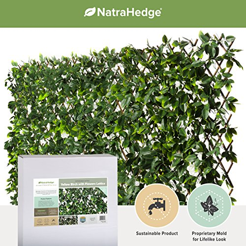 NatraHedge Faux Yellow Birch Expandable Trellis (Topiary Silk Ivy)