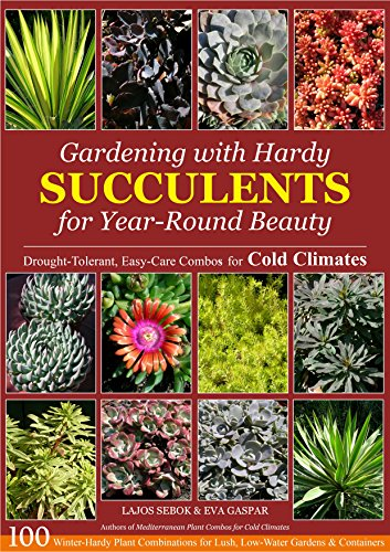 Gardening with Hardy Succulents for Year-Round Beauty: Drought-Tolerant, Easy-Care Combos for Cold Climates (A Colder Climate compare prices)