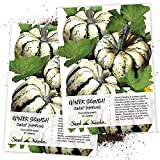 Seed Needs, Sweet Dumpling Winter Squash (Cucurbita Pepo) Twin Pack of 45 Seeds Each Non-GMO