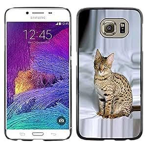 TopCaseStore / la caja del caucho duro de la cubierta de protección de la piel - Savannah Ocicat Spots Brown Proud Cat - Samsung Galaxy S6 SM-G920