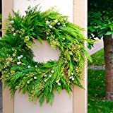 20 Real Red Cedar Tree Branches, 20 Freshly Cut braches 8-16 inches Long, Wreaths, Garlands, Christmas Decorations,Wedding Decorations.