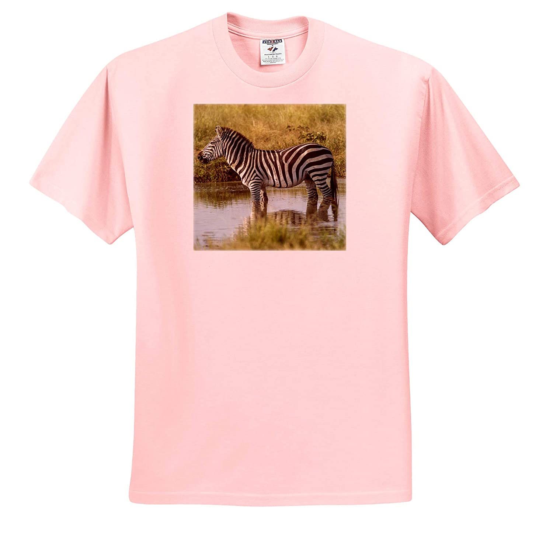 Zebras Adult T-Shirt XL 3dRose Danita Delimont Zebra Tanzania Africa ts/_312510