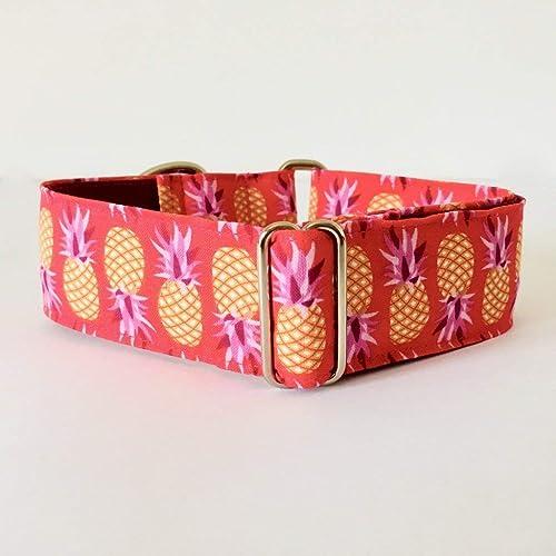 4GUAUS Collar Martingale para Perros - Modelo Piñas Rosa: Amazon ...