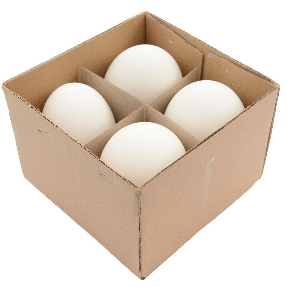 AGRICOLA Organic Easter Decorazioni Uova Di Oca 12X12X9Cm Pasqua
