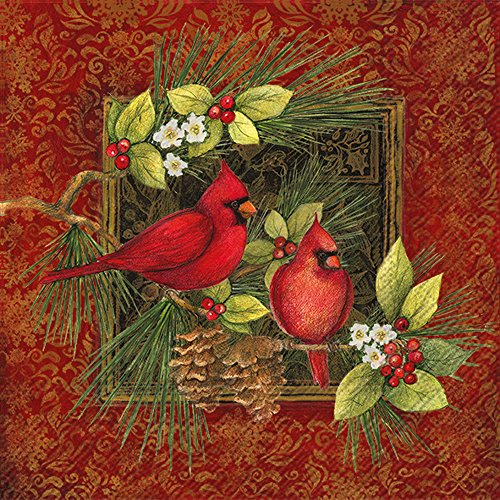 Botanical Stove (Ideal Home Range C767100 Holiday Cocktail Napkins, Botanical Christmas Birds)