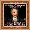 The Sorrows of Young Werther Audiobook by Johann Wolfgang von Goethe Narrated by Don Hagen