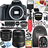 Canon 2249C001 EOS Rebel SL2 24MP DSLR Camera (Black, Body Only) + 18-250mm F3.5-6.3 DC OS HSM Macro + EF 50mm f/1.8 STM Prime Lens + 64GB Deluxe Bundle