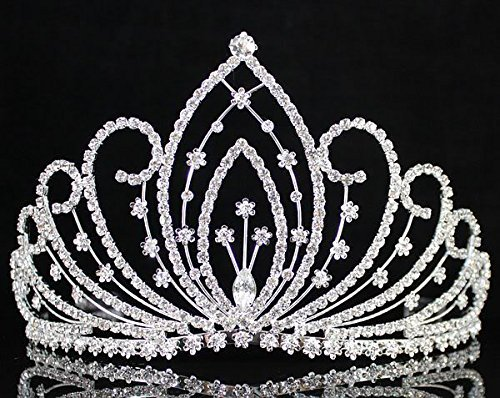 Janefashions Blossom Pageant Rhinestone Crystal Tiara Crown w/ Hair Combs Bridal Prom T1294 (Blossom Crown)