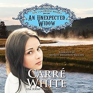 An Unexpected Widow Audiobook