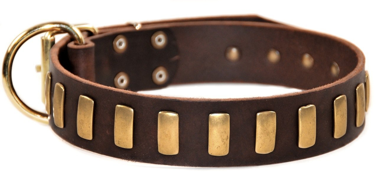 Dean & Tyler Plated Perfection Dog Collar with Brass Plates and Buckle, 26 by 1-1 2-Inch, Brown