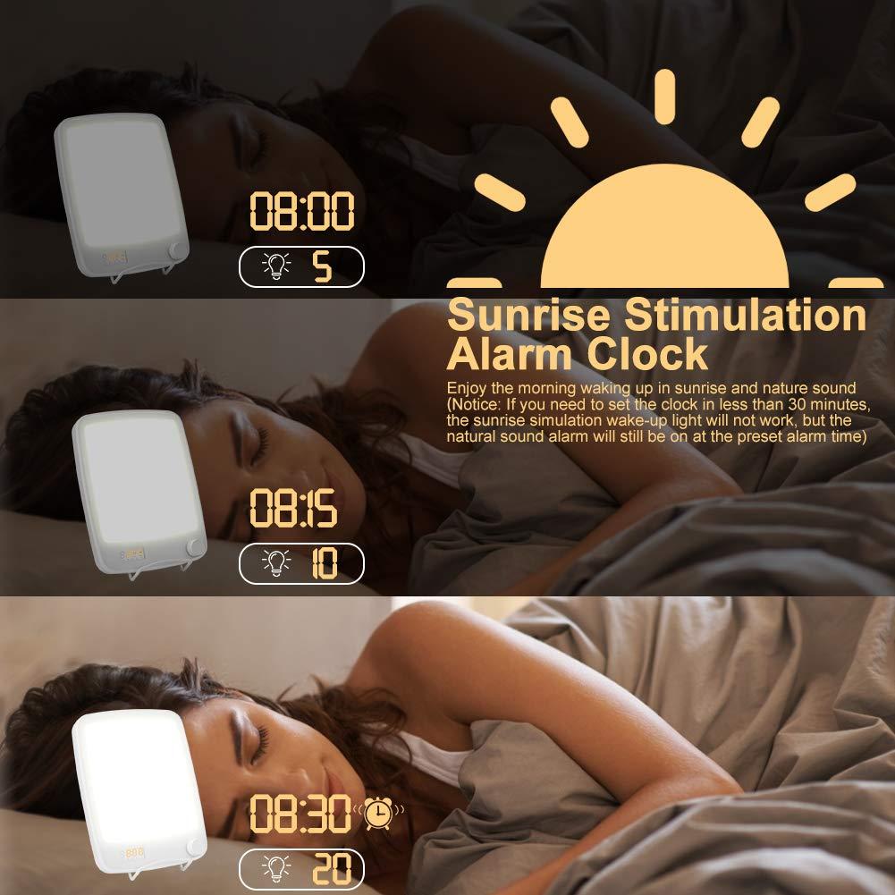 Haofy Lampe de Luminoth/érapie 10000 lux SAD Lampe Lumi/èr Simulation de la lumi/ère du jour Lampe 2-en-1 lumi/ère du jour R/éveil Sunrise avec 20 Modes de luminosit/é//avec Support et Minuterie Sans UV