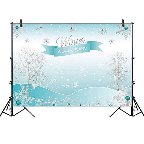 136684c0924f Allenjoy 8x6ft Winter Wonderland Theme Backdrop for Girl Sweet 16 Sixteen  1st Birthday Party Banner Festival