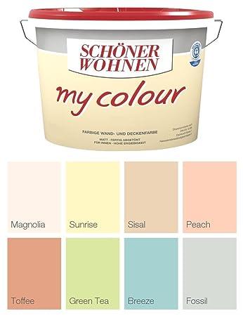 Schöner Wohnen Wandfarbe My Colour 5 Liter, Zarte Farben, Green Tea ...