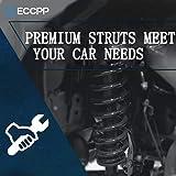 Complete Struts,ECCPP Front Pair Strut Spring