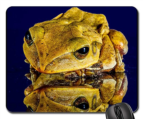 Mouse Pad - Frog Close Mirror Image (Friendly Frog Mirror)