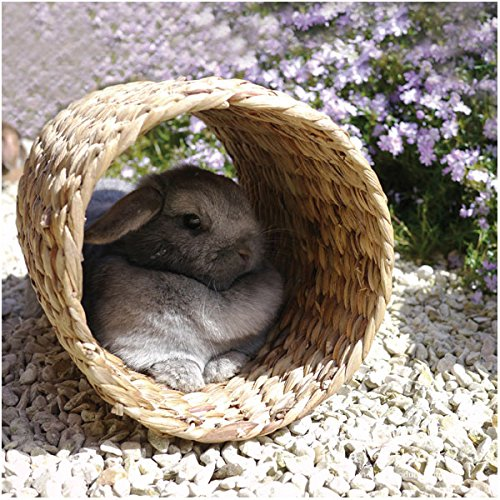 Rosewood Pet Large Hyacinth Tunnel Toy
