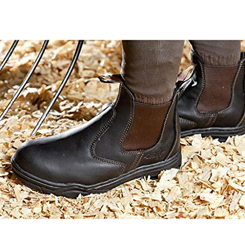 MOUNTAIN JODHPUR Reitschuh PROTECTIVE HORSE brown BvqB1wx