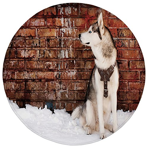 ,Alaskan Malamute,Domestic Pet Grungy Brick Wall and Snow Pedigree Animal Friend Decorative,Brown White Orange,Flannel Microfiber Non-slip Soft Absorbent,for Kitchen Floor Bathroom ()