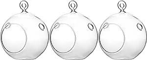 "WGV Hanging Terrarium Globe, Width 4"", Height 4.75"", DIY Air Succulent Planter, Clear Glass Vase Orb with Flat Bottom, Candle Holder for Windowsill Outdoor Garden Decor, 3 Pieces Bulk"