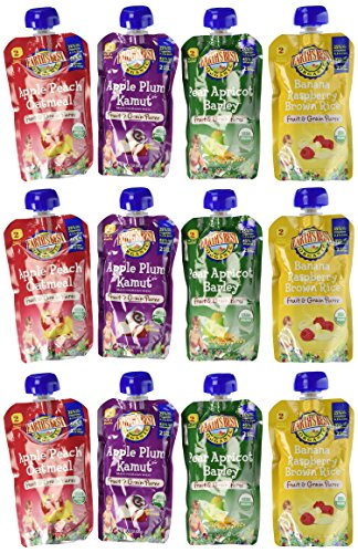 Earth's Best Organic Fruit and Grain Puree Pouches 4 Flavor Variety Pack (Pack of 12)