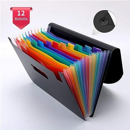 VBERWRUR Clasificadores Carpetas de Acordeón, Colores Archivador Acordeon 13 Bolsillos, Separadores Archivador A4, Archivadores Escolares con 2 Pcs etiquetas(Multicolor): Amazon.es: Oficina y papelería