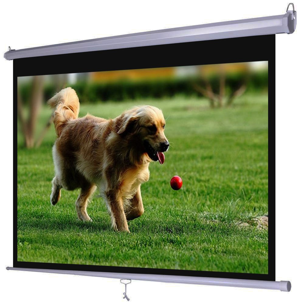 Dansung Projector Screen Manual Pull Down 100'' 100 inch 4:3 HD Movie Mountable HD Projection Screens for Indoor Home Theater Business Office