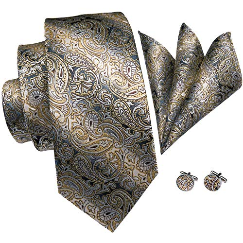 Hi-Tie Men Champagne Gold Black Paisley and Floral Tie Handkerchief Necktie with Cufflinks and Pocket Square Tie Set (Best Suit Shirt Tie Combinations)