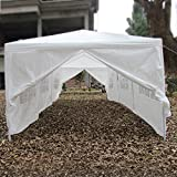 Qisan Canopy Tent Carport 10 X 30-feet Domain Carport with sidewalls, white(Calm Environment Only)
