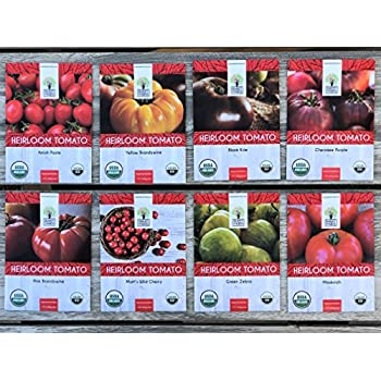 Heirloom Tomato Seeds Assortment - Eight Organic and Non-GMO Varieties: Brandywine, Cherokee Purple, Black Krim, Green Zebra, Amish Paste, Moskvich, Yellow Brandywine, Matt's Wild Cherry